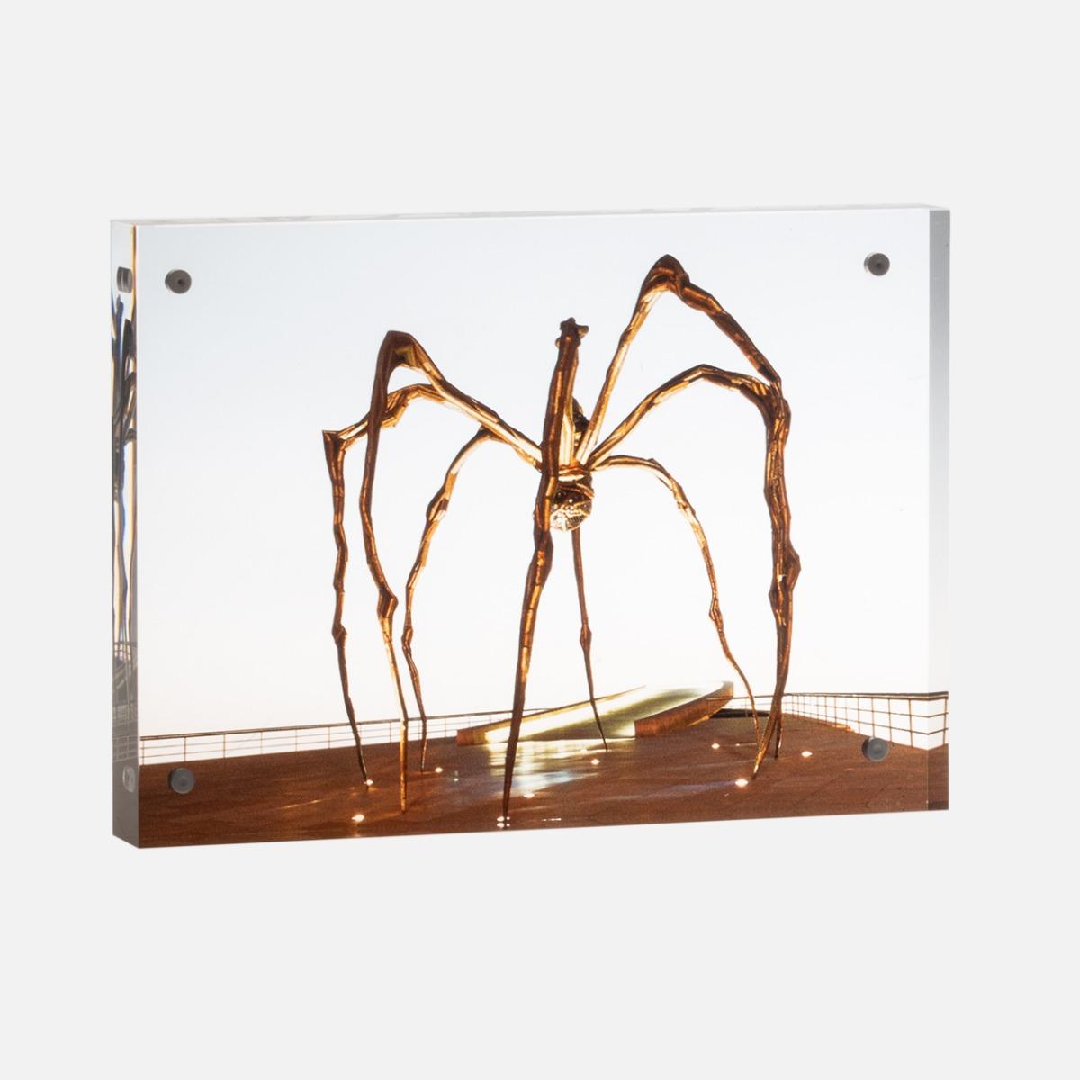 Metacrilato Araña